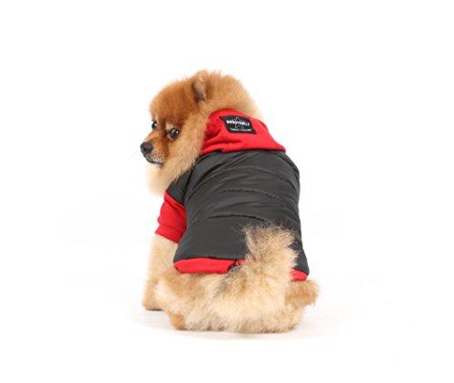 doggy dolly w110 hundejacke wasserabweisend mit kapuze schwarz rot wintermantel winterjacke. Black Bedroom Furniture Sets. Home Design Ideas